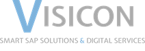 ERP Partner - Visicon Logo - XimantiX